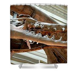 Ancient Crocodile Dinosaur Shower Curtain