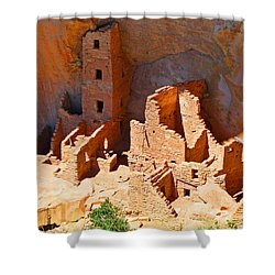 Ancient Dwelling Shower Curtain
