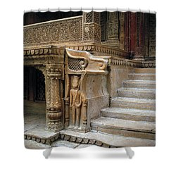 Ancient Rajasthan Shower Curtain by Shaun Higson
