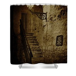 Ancient Ways Shower Curtain by Heiko Koehrer-Wagner