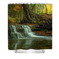 And God Proclaimed His Creation Good Shower Curtain
