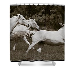 And The Race Is On Shower Curtain by Wes and Dotty Weber