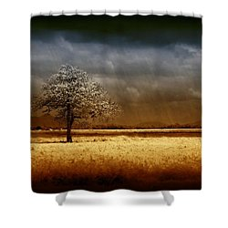And The Rains Came Shower Curtain by Holly Kempe