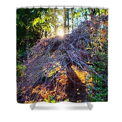 And Then The Sun Came Out Shower Curtain
