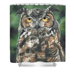 Shower Curtain featuring the painting And You Were Saying by Lori Brackett