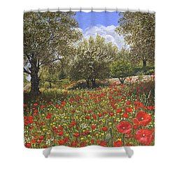 Andalucian Poppies Shower Curtain by Richard Harpum