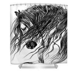 Andalusian Arabian Head Shower Curtain