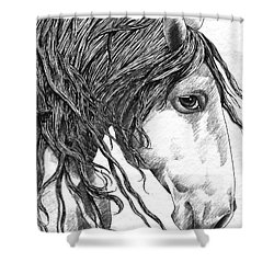 Andalusian Horse Shower Curtain by Kate Black