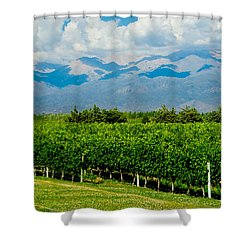 Andes Vineyard Shower Curtain