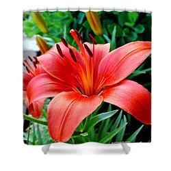 Andrea's Lily Shower Curtain