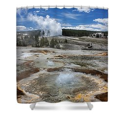Anemone And Old Faithful In Concert Shower Curtain