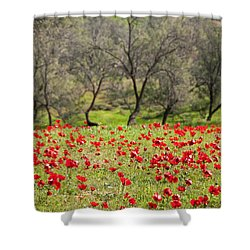 At Ruchama Forest Israel Shower Curtain by Dubi Roman