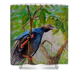Angel Bird Of  North Moluccas Shower Curtain