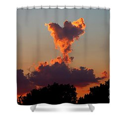 Angel Cloud Shower Curtain by Marty Fancy