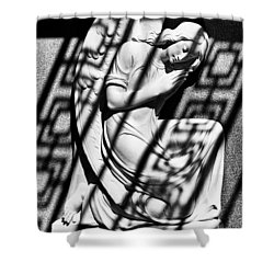 Angel In The Shadows 2 Shower Curtain
