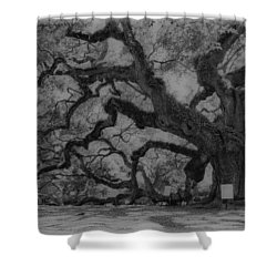 Angel Oak B And W Shower Curtain
