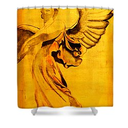 Angel Of The Horizon II Shower Curtain