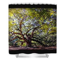Angel Of Time Shower Curtain