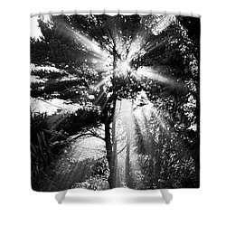 Angel Sun Shower Curtain