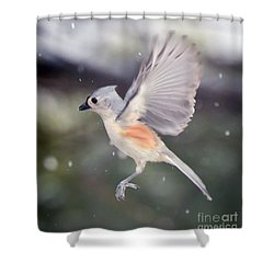 Shower Curtain featuring the photograph Angel Wings by Kerri Farley