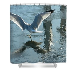 Angelic Wings Shower Curtain