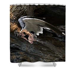 Angels- Call On The Name Of Jesus And Stand Still Shower Curtain