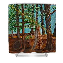 Angle In Idyllwild Shower Curtain by Cassie Sears