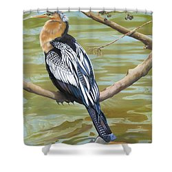 Anhinga Perched Shower Curtain
