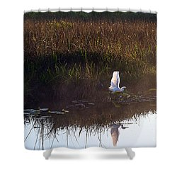 Anhinga Trail Sunrise Shower Curtain by Bruce Bain