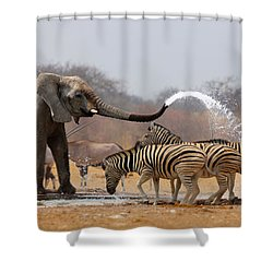 Animal Humour Shower Curtain by Johan Swanepoel