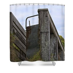 Animal Ramp Shower Curtain