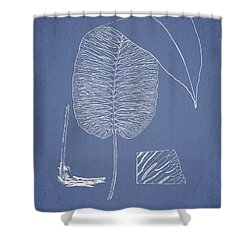 Anisogonium Cordifolium Shower Curtain by Aged Pixel