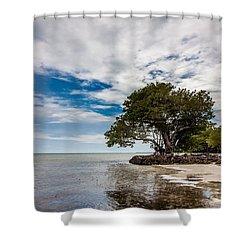 Anne's Beach-3184 Shower Curtain