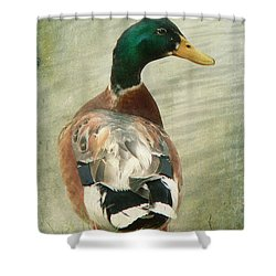Another Duck ... Shower Curtain