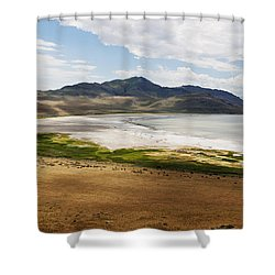 Shower Curtain featuring the photograph Antelope Island by Belinda Greb