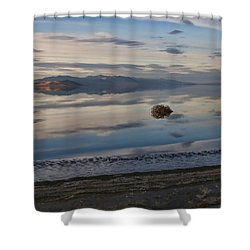 Shower Curtain featuring the photograph Antelope Island - Lone Tumble Weed by Ely Arsha