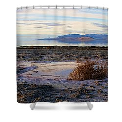 Shower Curtain featuring the photograph Antelope Island - Tumble Weed by Ely Arsha