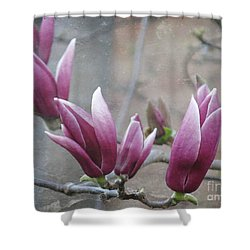 Anticipation Shower Curtain by Leanne Seymour