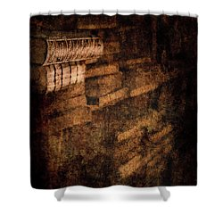 Antique Books On Dusty Book Shelves Shower Curtain by Loriental Photography