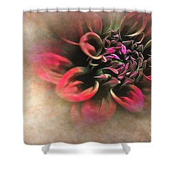 Antique Dahlia Shower Curtain by Kaye Menner