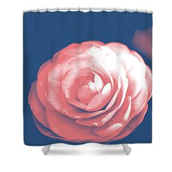Antique Pink Camellia Flower Shower Curtain by P S