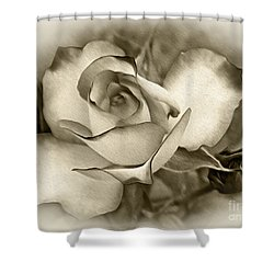 Antique Rose Shower Curtain