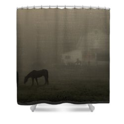 Antique Scene Of Horses In A Fog Shower Curtain by Mick Anderson
