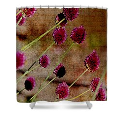 Antique Style Pink Floral Shower Curtain