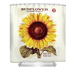 Antique Sunflower Seeds Pack Shower Curtain by Peter Gumaer Ogden