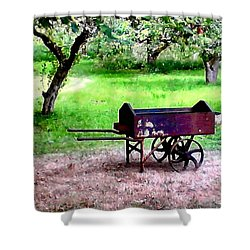 Shower Curtain featuring the photograph Antique Wheelbarrow by Sadie Reneau