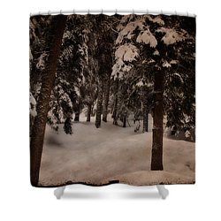 Antique Woodscape Shower Curtain