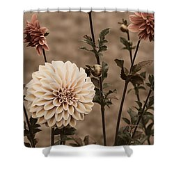 Shower Curtain featuring the photograph Antiqued Dahlias by Jeanette C Landstrom