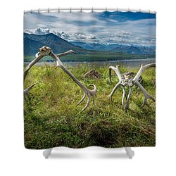 Antlers On The Hill Shower Curtain by Andrew Matwijec