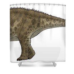 Apatosaurus, A Sauropod Dinosaur Shower Curtain by Vitor Silva